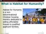 what is habitat for humanity