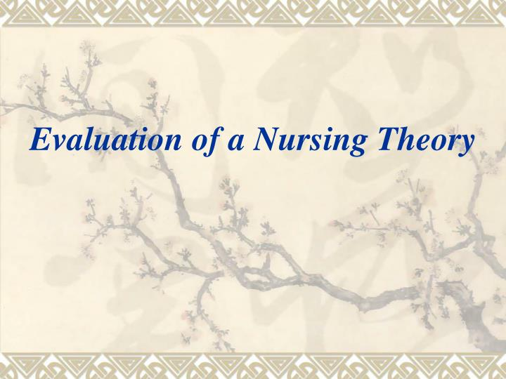 evaluation of a nursing theory n.