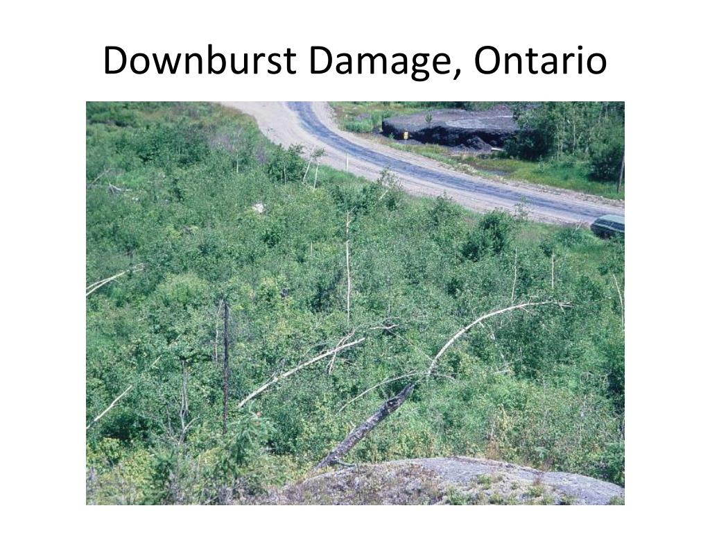 Downburst Damage, Ontario