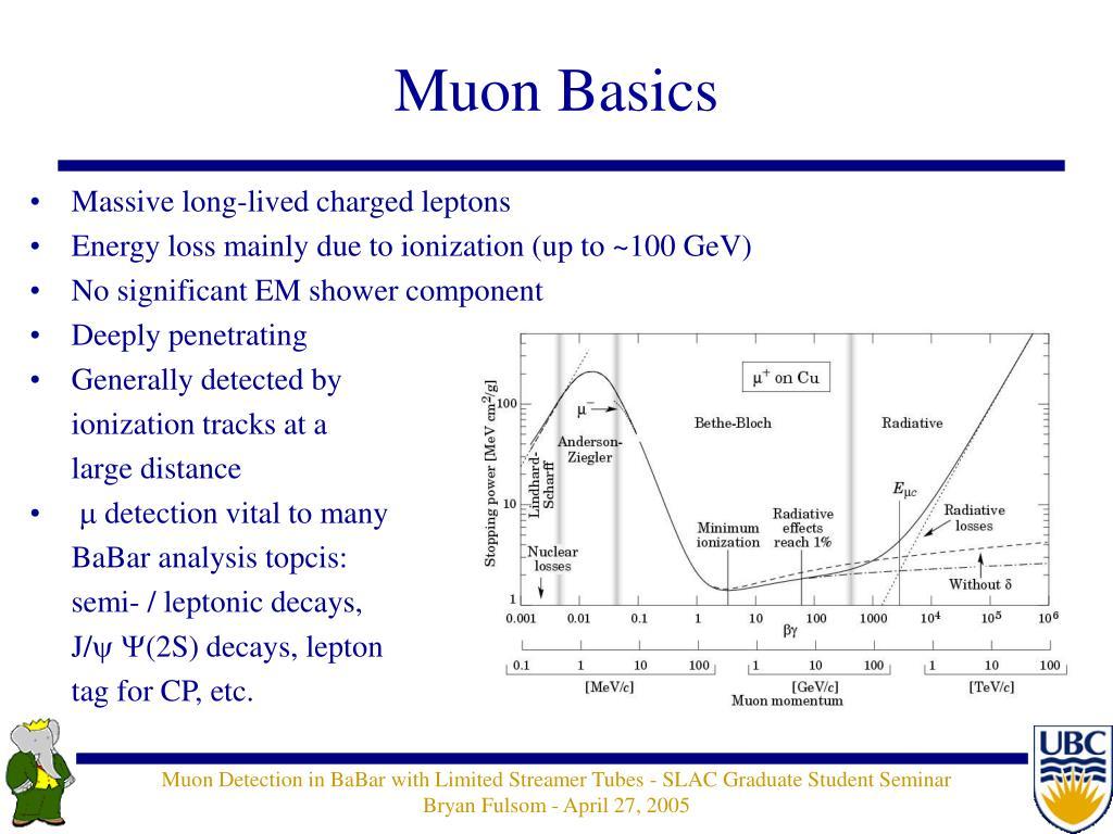Muon Basics