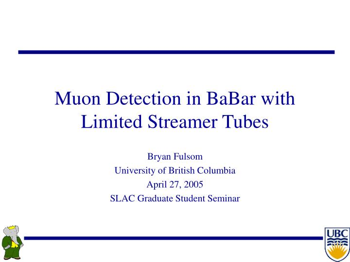 muon detection in babar with limited streamer tubes n.