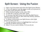 split screen using the fusion