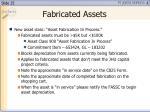 fabricated assets