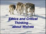 ethics and critical thinking about wolves