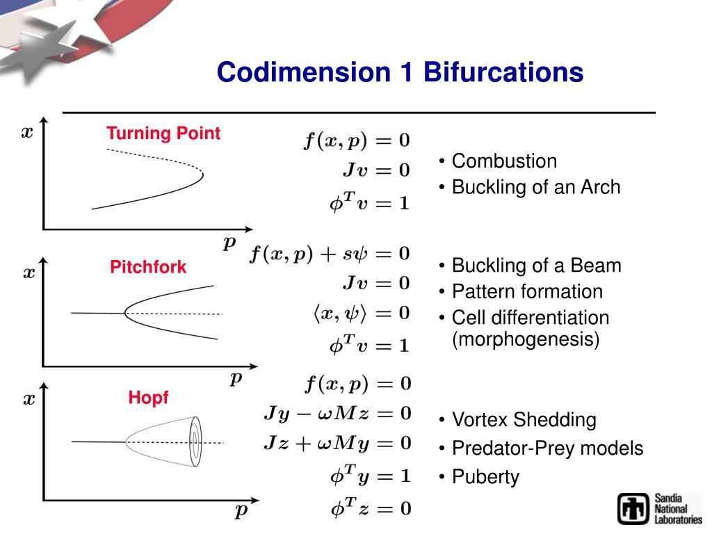 Codimension 1 Bifurcations