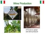 wine production