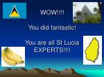 wow you did fantastic you are all st lucia experts