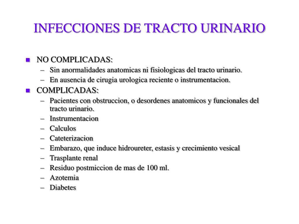 enterobacter aerogenes uretrite