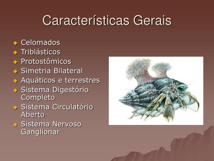 giardia infection baby