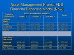 asset management project fds financial reporting model new