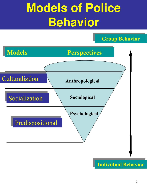 Models of Police Behavior