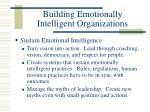 building emotionally intelligent organizations28
