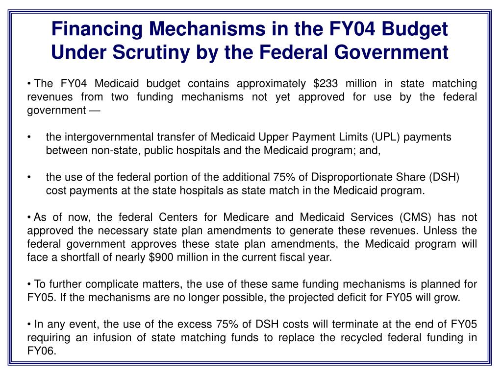 Financing Mechanisms in the FY04 Budget Under Scrutiny by the Federal Government