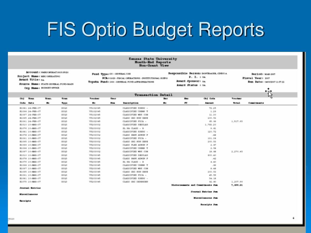 FIS Optio Budget Reports