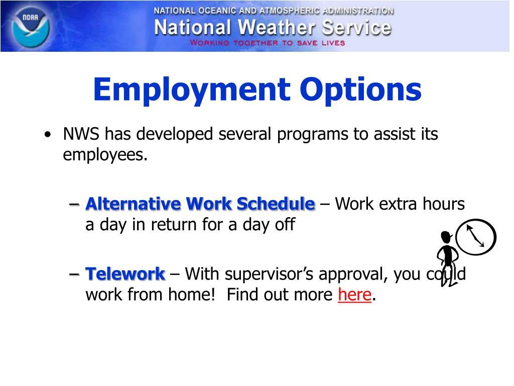 Employment Options