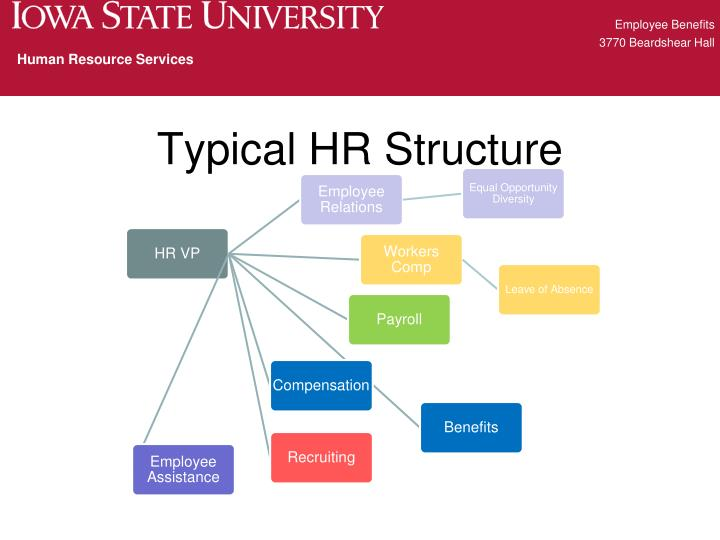 Typical hr structure