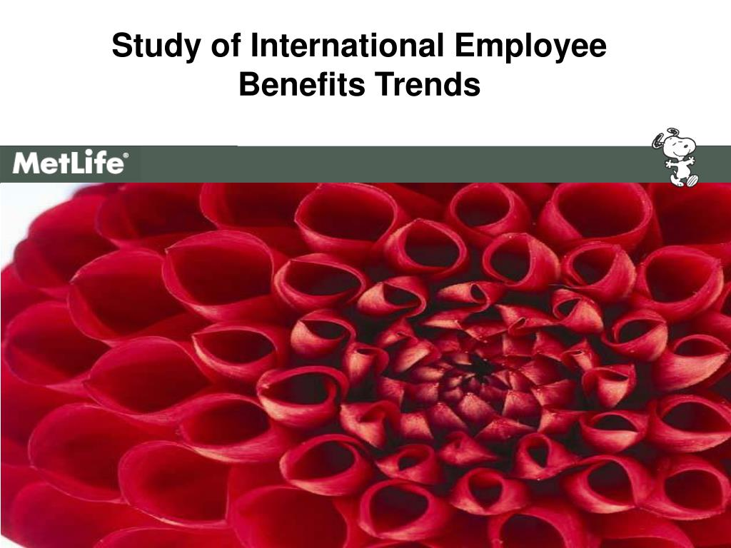 study of international employee benefits trends l.