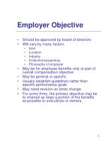 employer objective