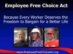 employee free choice act19