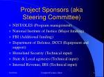 project sponsors aka steering committee
