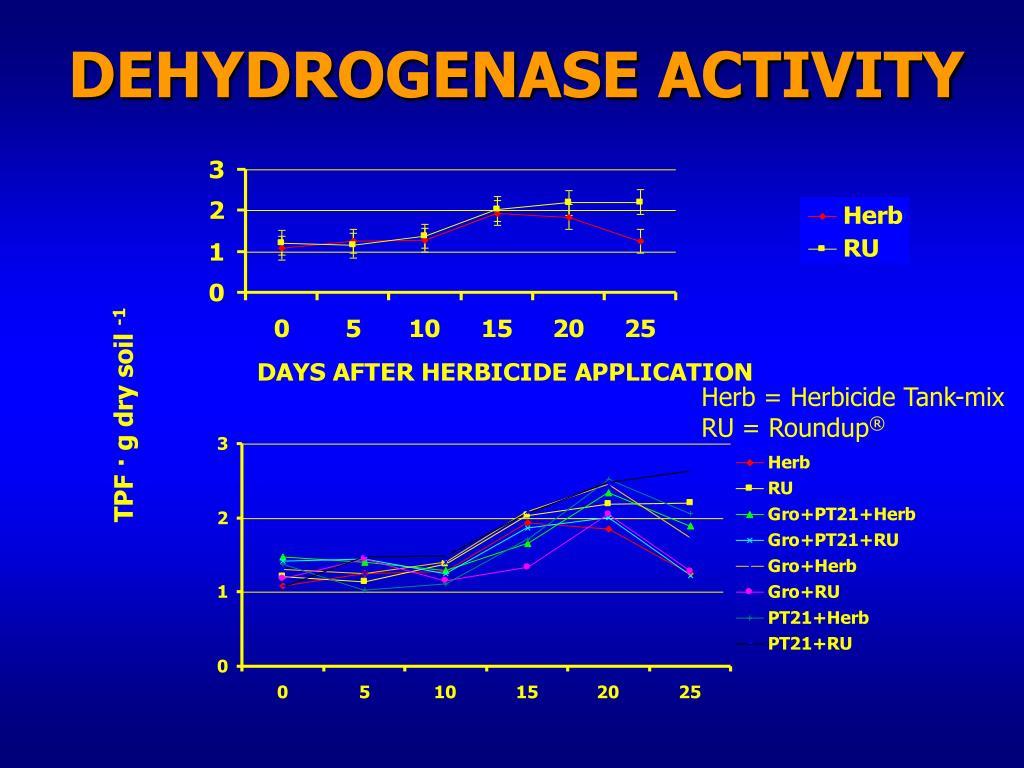 DEHYDROGENASE ACTIVITY