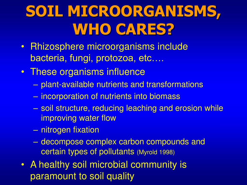 SOIL MICROORGANISMS, WHO CARES?