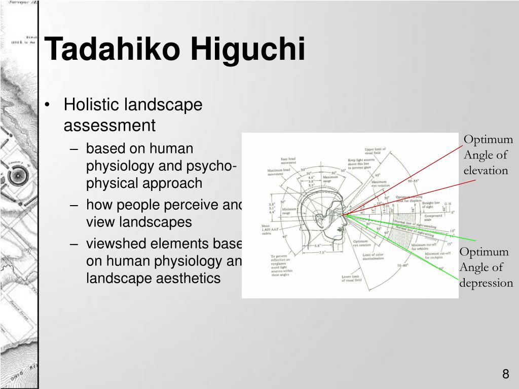 Holistic landscape assessment