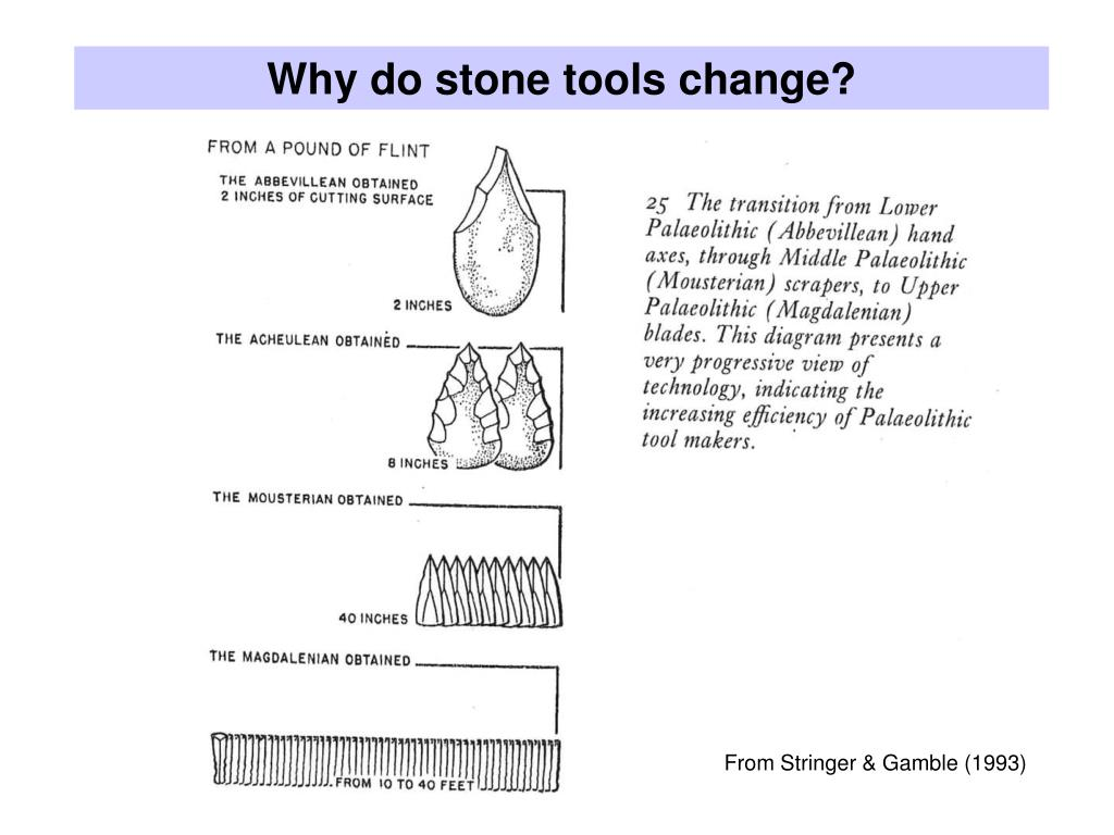 Why do stone tools change?