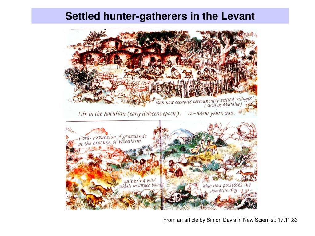 Settled hunter-gatherers in the Levant