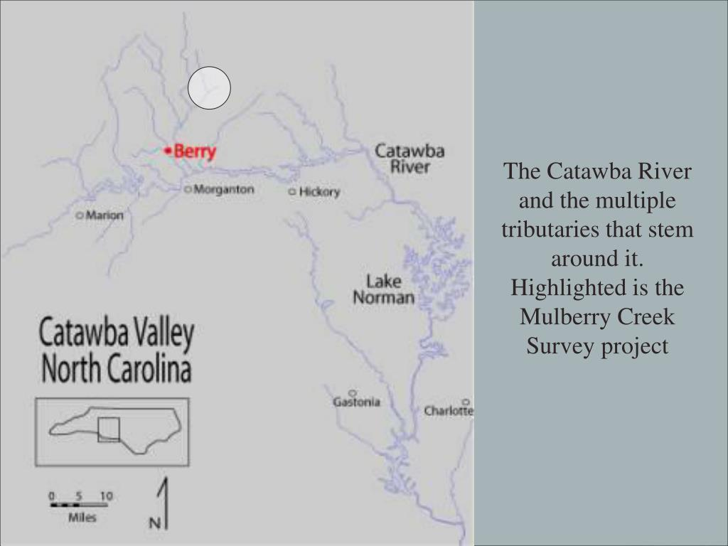The Catawba River and the multiple tributaries that stem around it.  Highlighted is the Mulberry Creek Survey project
