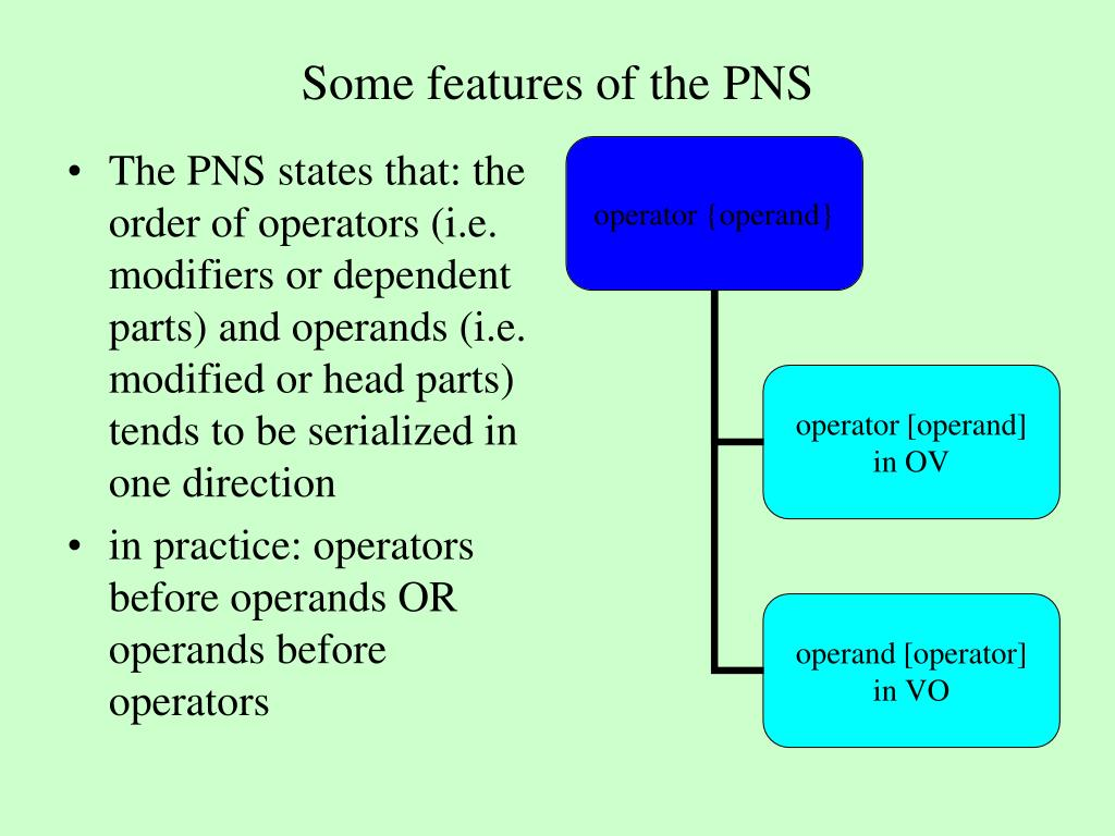 Some features of the PNS