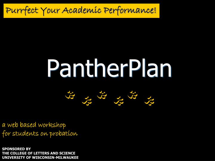 Purrfect your academic performance