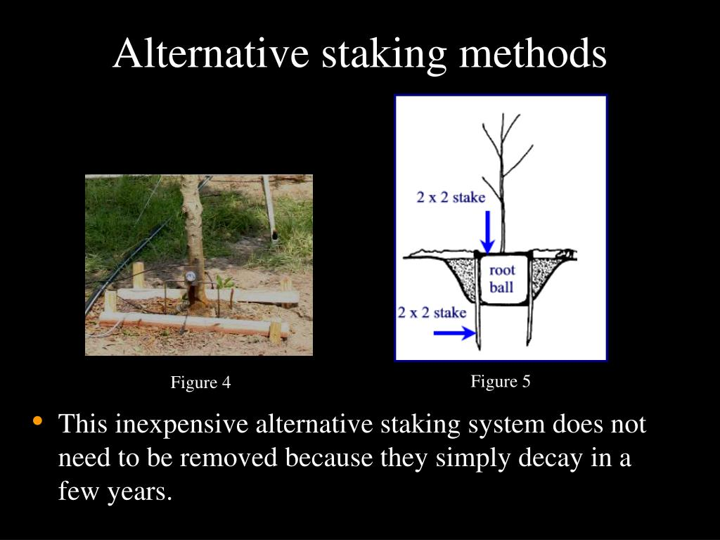 Alternative staking methods