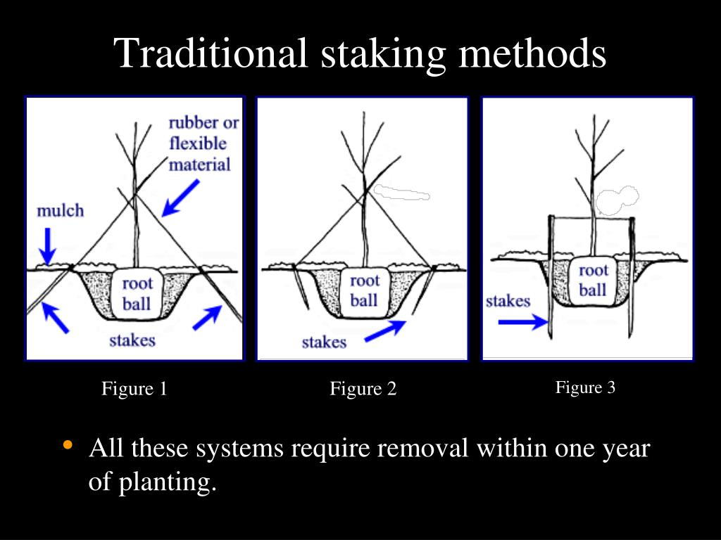 Traditional staking methods