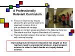 a professionally relevant curriculum