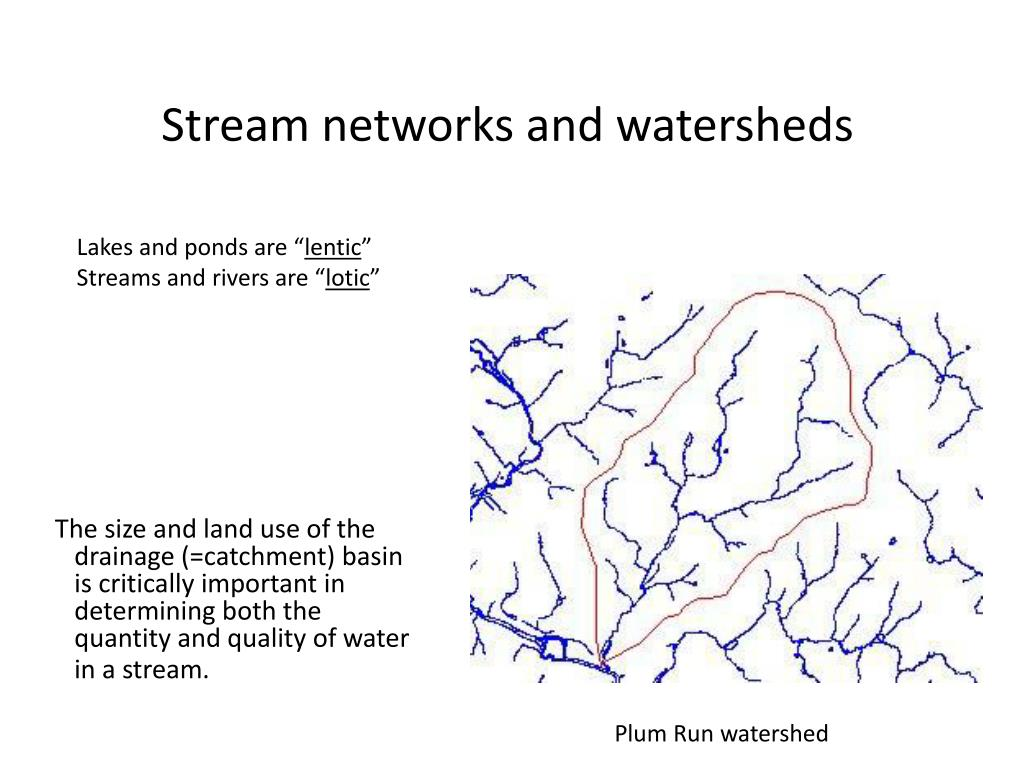 stream networks and watersheds l.