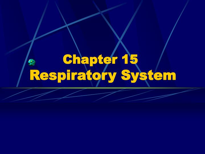 Chapter 15 respiratory system