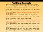 profiling example19