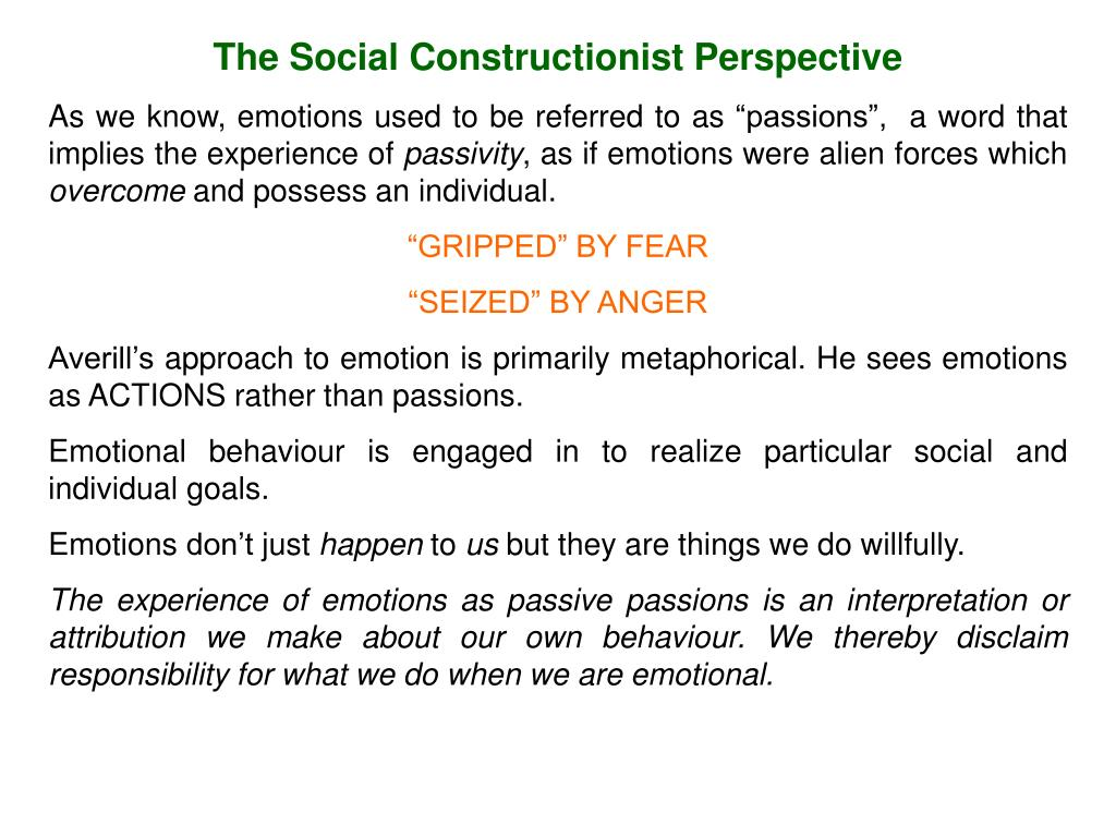 The Social Constructionist Perspective