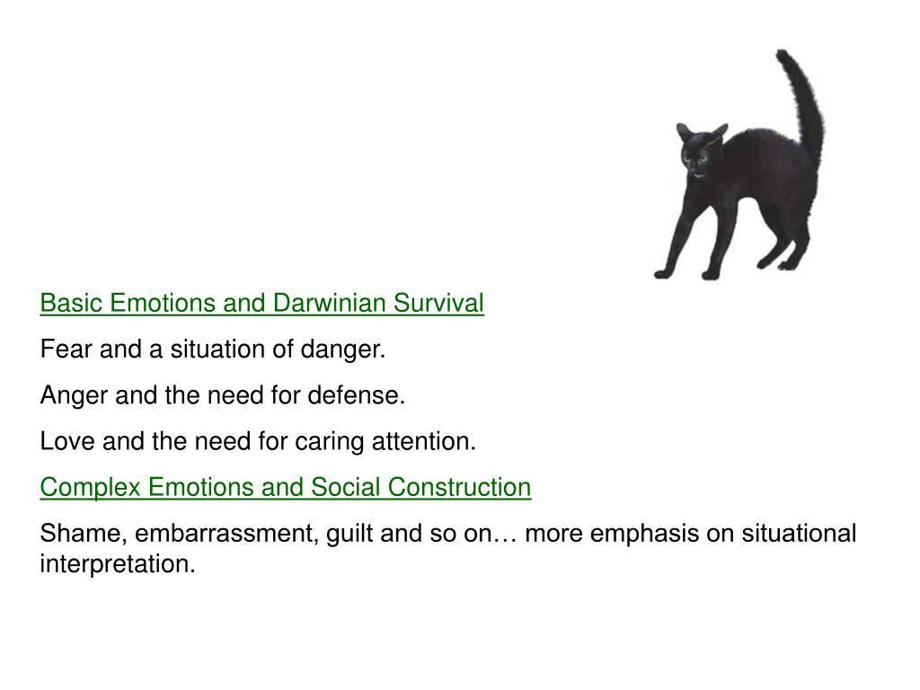 Basic Emotions and Darwinian Survival