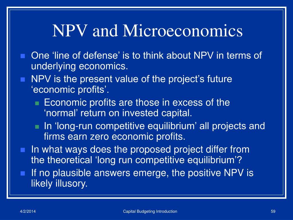 NPV and Microeconomics