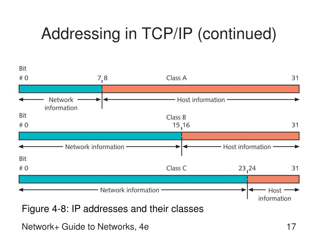 Addressing in TCP/IP (continued)