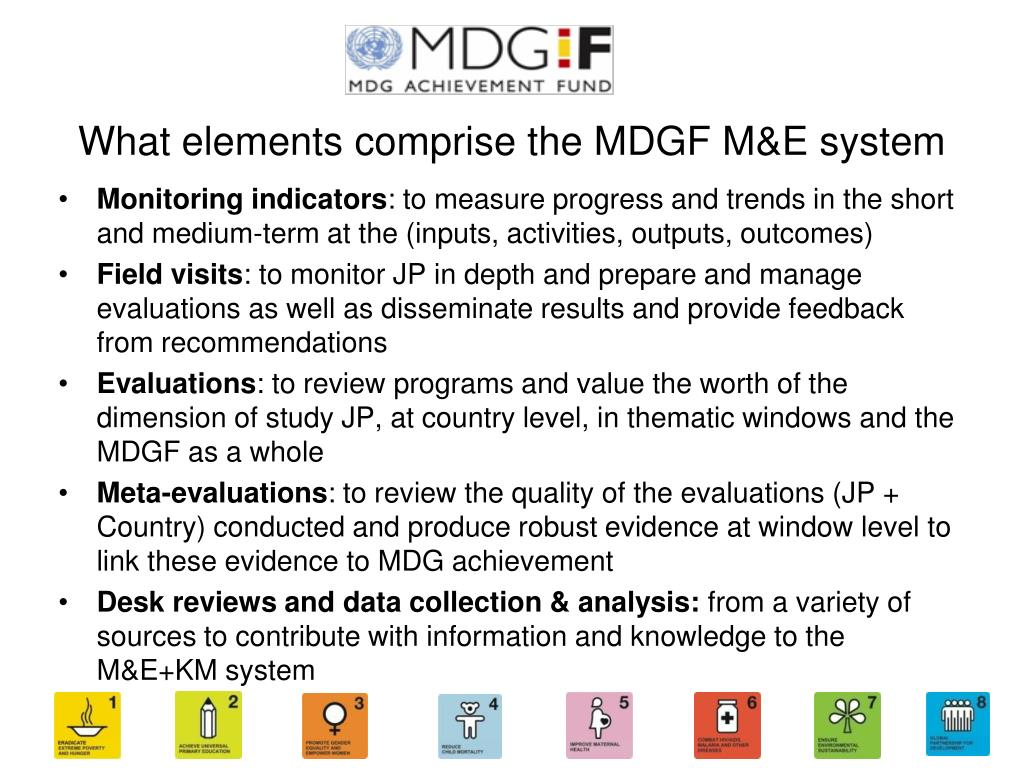 What elements comprise the MDGF M&E system