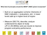 what kind of principles should the mdgf s m e system incorporate9