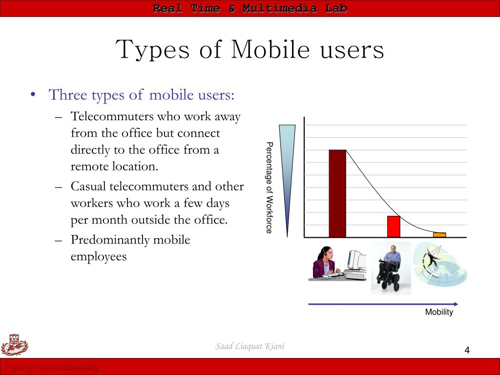 Types of Mobile users