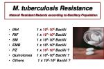 m tuberculosis resistance natural resistant mutants according to bacillary population