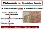 m tuberculosis very slow division capacity