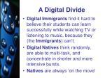 a digital divide