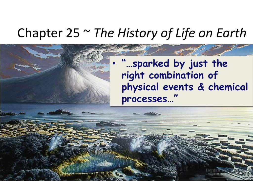 history of life on earth Worksheet: history of the earth fet phase grade 10 - 12 learning area: life sciences  geologists divide the history of earth into several different time units the  • names and pictures of life that existed in that period 2 create a time line showing the changes in life forms.