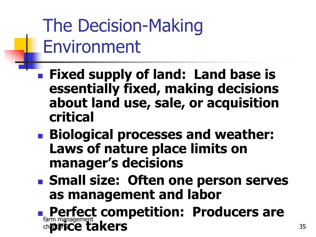 The Decision-Making Environment